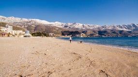 Femme avec le chien sur la plage en hiver Image libre de droits