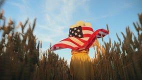 Femme avec le drapeau de l'Amérique dans le domaine clips vidéos
