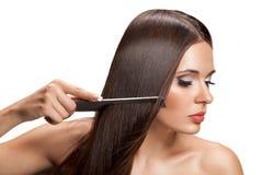 Femme avec le long cheveu sain Image stock