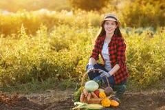 Femme avec le panier des légumes photo stock