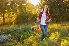 Femme avec le panier des légumes image stock