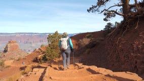 Femme avec le sac à dos augmentant sur le sentier piéton de trekking dans Grand Canyon Arizona Etats-Unis banque de vidéos