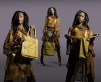 Femme avec le sac à main Images libres de droits