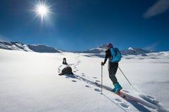 Femme avec le ski de montagne et deux chiens d'amis Photos stock