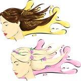 Femme avec les cheveux healshy illustration stock