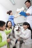 Femme avec les enfants et le chien dans le bureau du vétérinaire Photo libre de droits