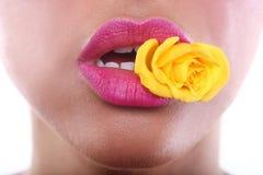 Femme avec les lèvres sensuelles tenant la fleur dans la bouche Photo libre de droits