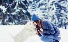 Femme avec sa scène d'offre de chien images libres de droits
