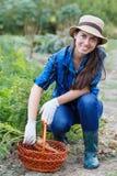 Femme avec un panier des carottes moissonnées photo libre de droits