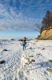 Femme avec une promenade de chien un jour ensoleillé d'hiver Photos libres de droits