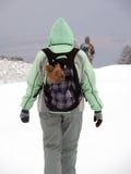 Femme avec Yorkshire Terrier en montagne de Milou Photographie stock