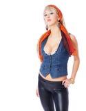 Femme blonde chaude images libres de droits