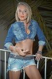 Femme blonde en denim photographie stock