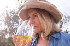 Femme buvant une glace de vin Image stock