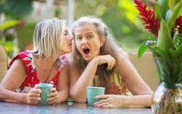Femme choquée écoutant l'ami de chuchotement Photo stock