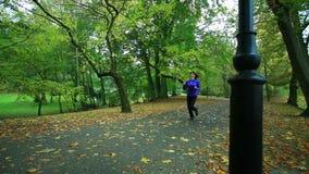 Femme courant dans la forêt de chute d'automne Style de vie sain clips vidéos