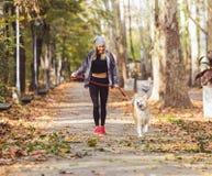 Femme courant et marchant en beau parc avec le chien d'akita Photos stock