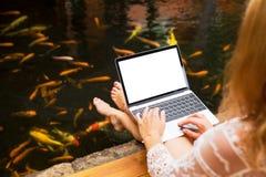 Femme décontractée à l'aide de l'ordinateur portable à côté des poissons colorés dans la piscine image stock