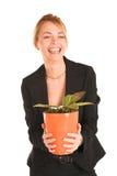 Femme d'affaires #242 Photos stock