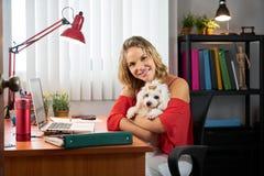 Femme d'affaires de portrait travaillant avec le chien dans le bureau Image libre de droits