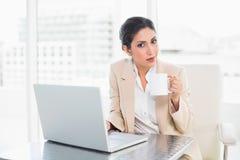 Femme d'affaires de sourire tenant la tasse tout en travaillant sur l'ordinateur portable Photographie stock