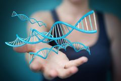 Femme d'affaires employant le rendu moderne de la structure 3D d'ADN Photographie stock