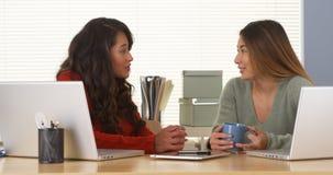 Femme d'affaires mexicaine parlant avec le collègue japonais Images stock