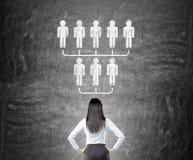 Femme d'affaires regardant le croquis de hiérarchie illustration stock