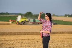 Femme d'agriculteur à la récolte Photo stock