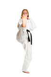 Femme d'arts martiaux Photographie stock libre de droits