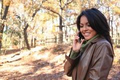 Femme d'automne de scène d'automne avec le téléphone portable photographie stock libre de droits