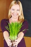 Femme d'Eldery avec des herbes Photos libres de droits
