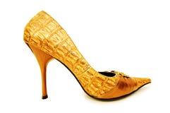 femme d'isolement de chaussures image libre de droits