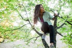 Femme dans l'arbre ayant le temps d'amusement Photos stock