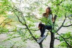 Femme dans l'arbre ayant le temps d'amusement Photos libres de droits