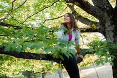 Femme dans l'arbre ayant le temps d'amusement Photo libre de droits