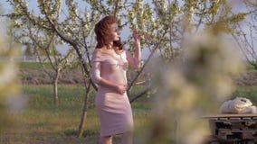 Femme dans l'expectative heureuse avec le ventre appréciant le jardin d'arbres de floraison au printemps banque de vidéos