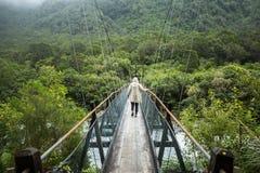 Femme dans l'imperméable marchant sur le pont suspendu images libres de droits