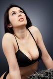Femme dans la lingerie avec le fendage sexy Photo stock