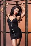 Femme dans la robe noire images stock