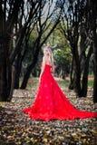 Femme dans la robe rouge en automne de forêt de conte de fées de chute images libres de droits