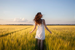 Femme dans le domaine de blé jaune image libre de droits