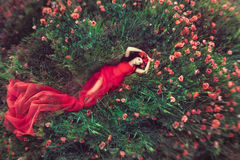 Femme dans le domaine de pavot de fleur en été Photo stock