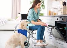 Femme dans le fauteuil roulant faisant cuire avec le chien de service Photos libres de droits