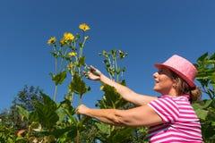 Femme dans le jardin de fleur Photographie stock