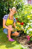 Femme dans le jardin plantant des fleurs Photos stock