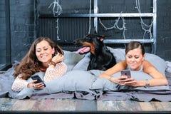 Femme dans le lit avec le grand chien Image stock