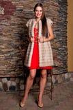 Femme dans le manteau de fourrure de luxe de chinchilla Photos libres de droits