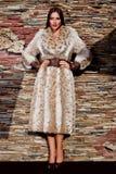 Femme dans le manteau de fourrure de luxe de lynx Photographie stock libre de droits