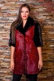 Femme dans le manteau de fourrure noir et rouge de luxe de léopard Image libre de droits